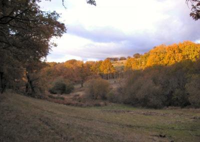 amezquita-rutapana-14